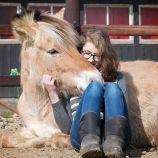Wat is Horses&Co?